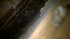 Missing cavity wall insulation